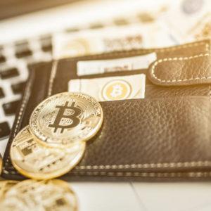 仮想通貨ウォレットはどのように手に入れる?購入方法、金額は?